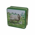 GRANDMA SHEEP IN THE COUNTY TIN