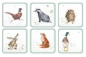 WRENDALE DESIGNS DIFFERENT  COASTERS S/6