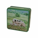 GRANDMA PIGS IN THE COUNTRY TIN